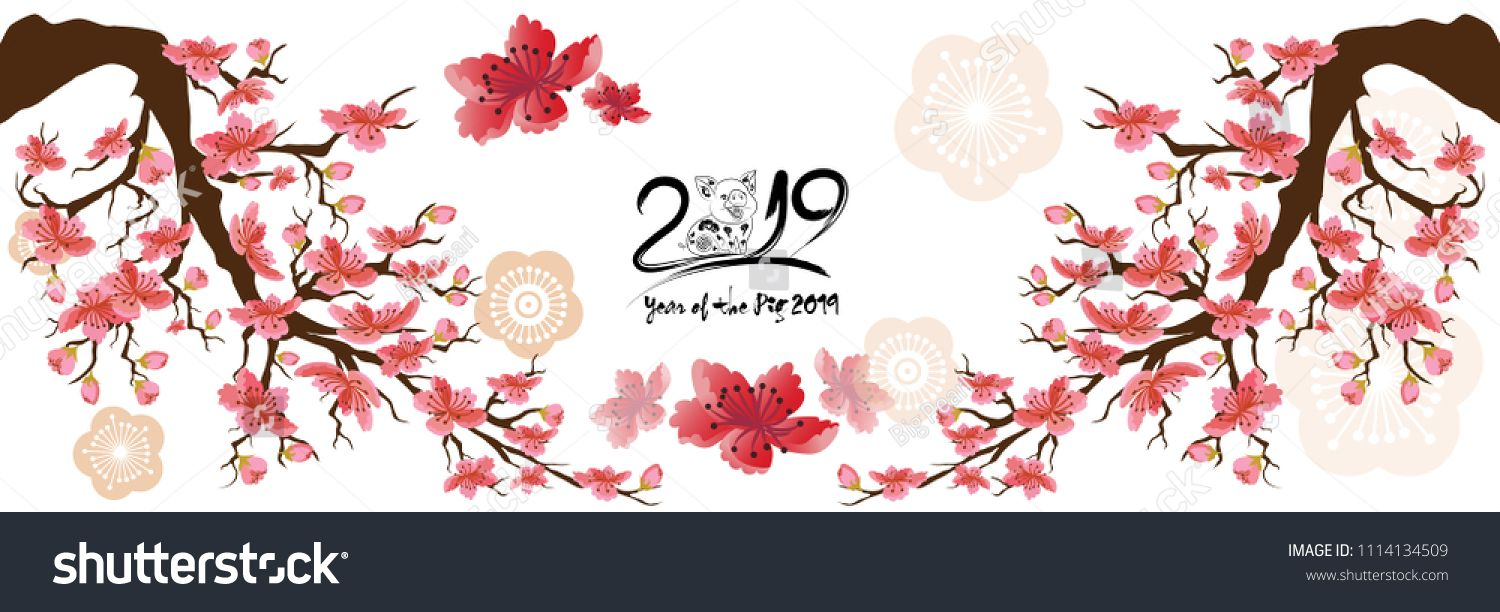 Set Banner Happy new year 2019 greeting card and chinese new.