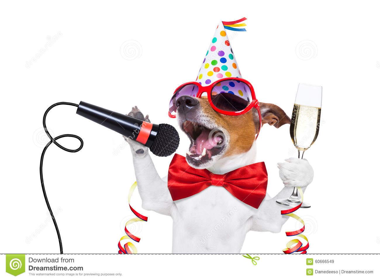 Happy new year dog stock image. Image of karaoke, glass.