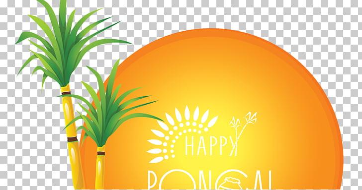 Thai Pongal Makar Sankranti, psd layered PNG clipart.