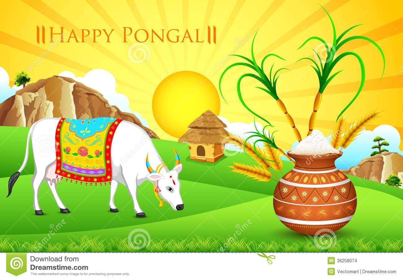 Pongal Cow Clipart.