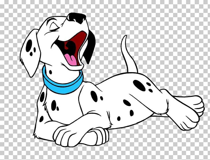 Dalmatian dog Puppy T.