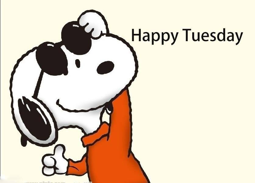 Happy Tuesday.