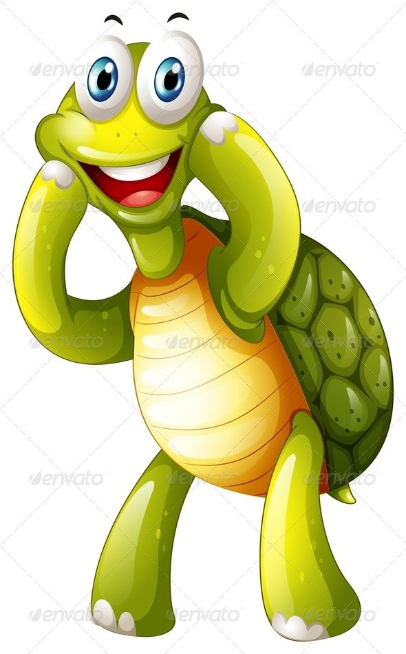 Happy Turtle.
