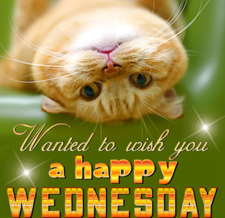 92+ Happy Wednesday Clipart.
