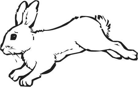 Hare Clipart.