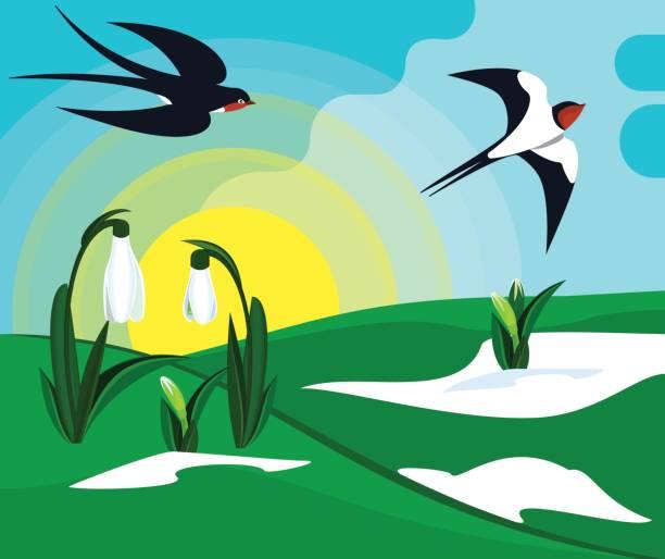 Harbinger Of Spring Clip Art, Vector Images & Illustrations.