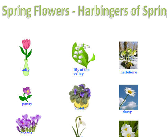 Flowers: Harbingers of Spring.