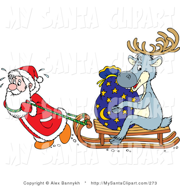 Christmas Clip Art of a Hard Working Santa Sweating and Pulling a.