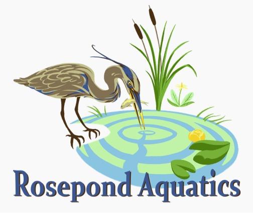 Rosepond Aquatics.