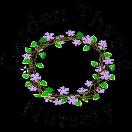 Salem Hardy Plant Sale — Garden Thyme Nursery.