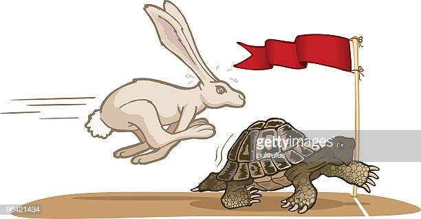 60 Top Hare Stock Illustrations, Clip art, Cartoons, & Icons.