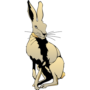 Hare clipart, cliparts of Hare free download (wmf, eps, emf, svg.