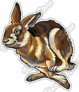 Running Hare Rabbit Bunny Animal Car Bumper Window Vinyl Sticker.