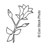 Harebell Clip Art and Stock Illustrations. 127 Harebell EPS.