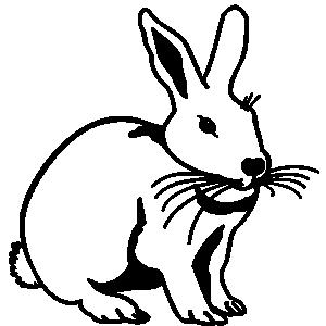 Hare Clip Art Free.