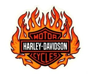 Harley Davidson Logo With Flames (4).