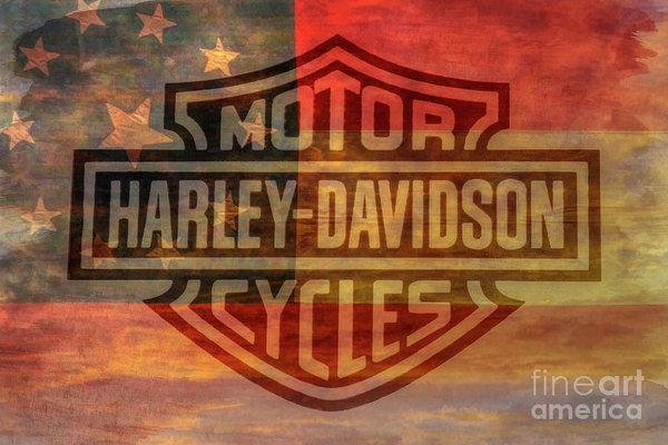 Harley Davidson Logo Old Confederate Flag Art Print.