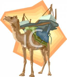 A_Camel_Wearing_A_Riding_Harness_Royalty_Free_Clipart_Picture_100424.