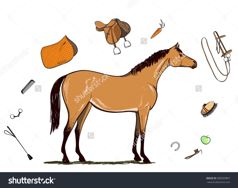 Horse Horseback Riding Tack Bridle Saddle Stock Vector 380599897.