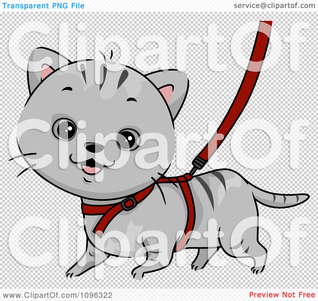 Clipart Cute Gray Cat Walking On A Leash And Harness.