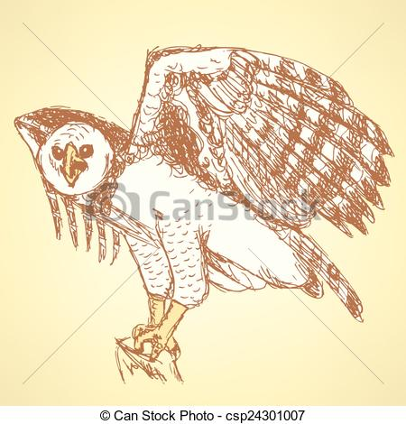 Vector Clipart of Sketch harpia bird head in vintage style, vector.