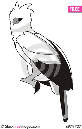 Harpy eagle clipart.