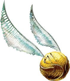 An amazing drawing of a Golden Snitch!.