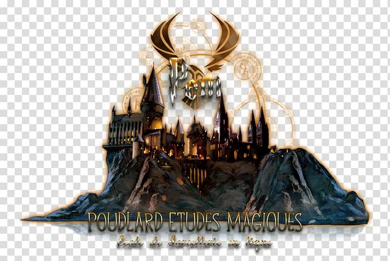 Harry Potter: Hogwarts Mystery James Potter Harry Potter and the.