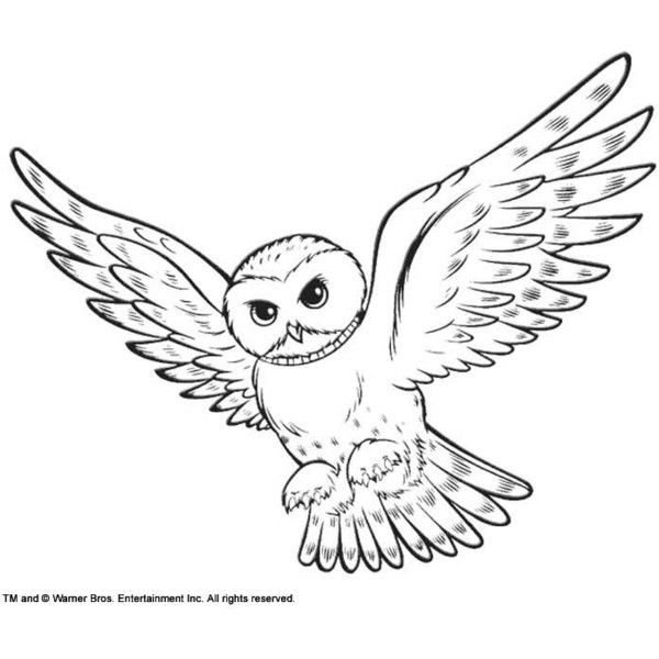Harry potter owl clipart 2 » Clipart Station.