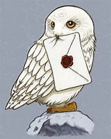 Harry Potter Owl Clipart (86+ images in Collection) Page 1.