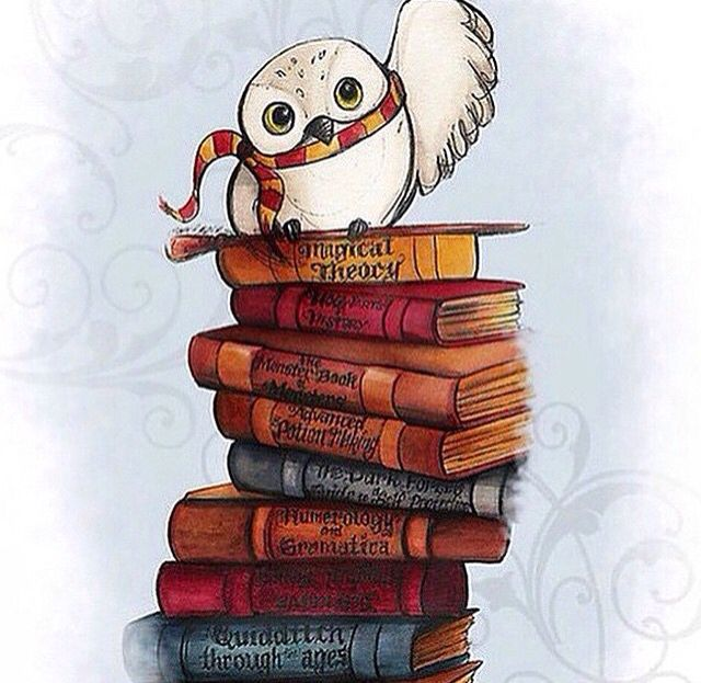 Hedwig! shared by Mrs. Weasley on We Heart It.