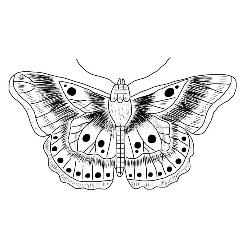 Harry Styles Tattoos Drawing at GetDrawings.com.