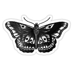 27 Best Harry Styles Butterfly Tattoo Outline images.