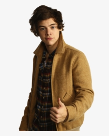 Harry Styles PNG Images, Transparent Harry Styles Image.
