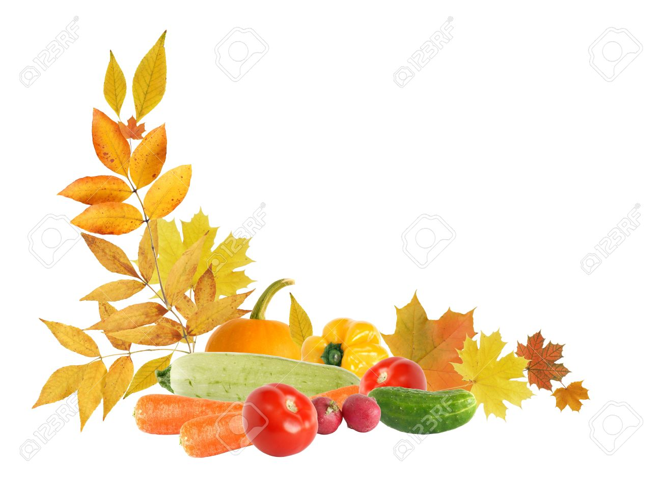 Harvest concept. Autumn leaves border with various vegetables...