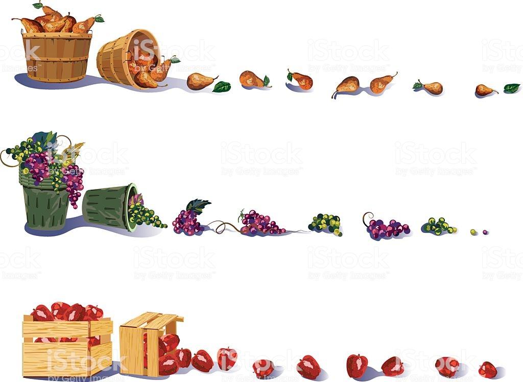 Fruit Harvest Borders Stock Illustration.