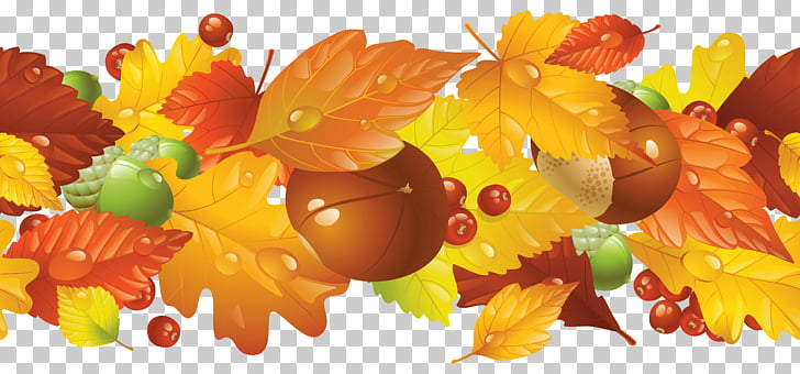 Thanksgiving Autumn Harvest festival , Free Fall Borders PNG.