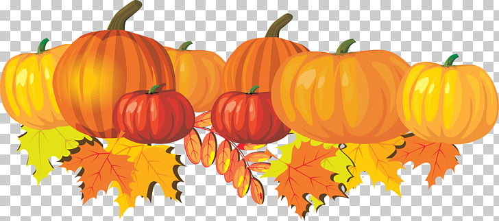 Autumn Free content Harvest festival , Fall Mum s PNG.
