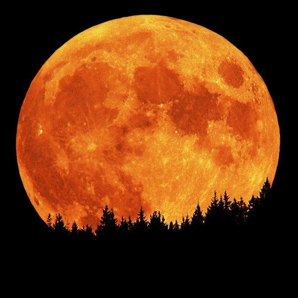 Full Harvest Moon Clipart.