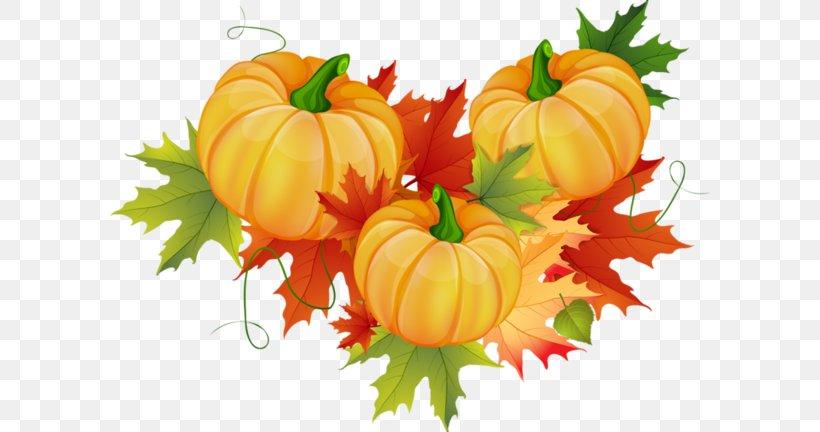 Pumpkin Cucurbita Pepo Thanksgiving Clip Art, PNG, 600x432px.