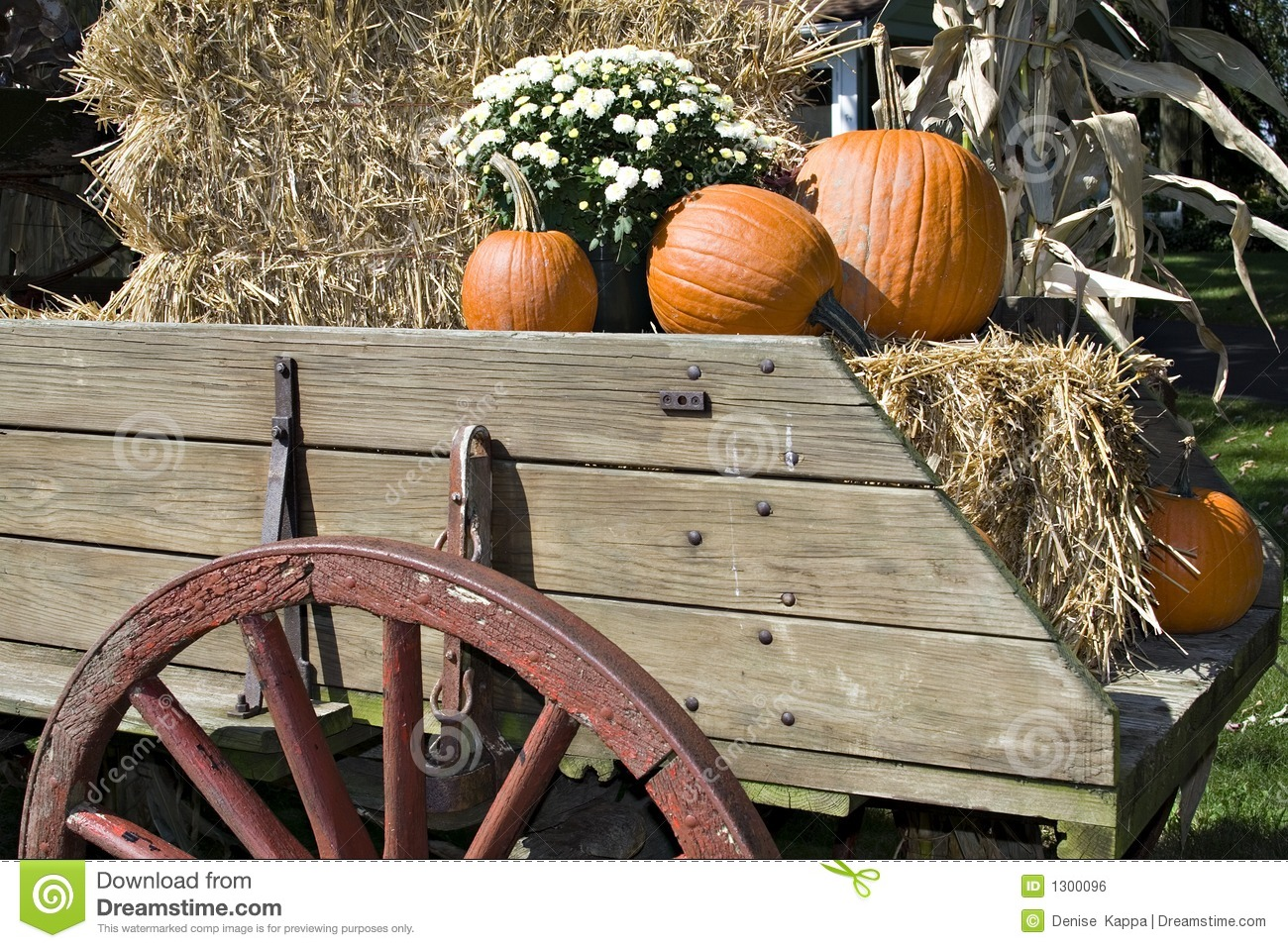 Harvest Wagon Stock Image.