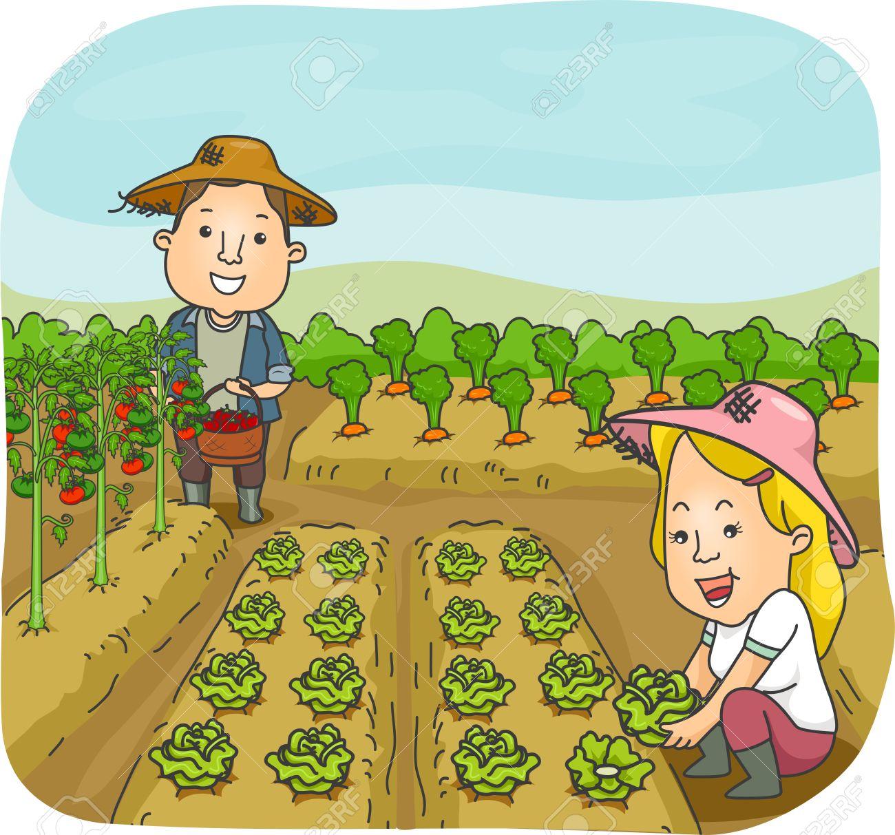 Harvesting clipart.