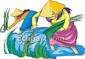 Clipart Picture of Asian Women Working in a Rice Paddy.