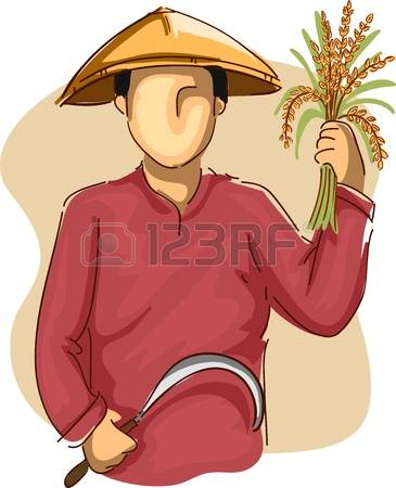 126 Planting Rice Stock Vector Illustration And Royalty Free.