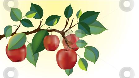 Apple Harvest Clipart.