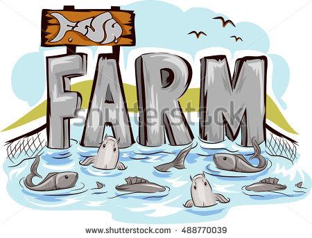 Fish Harvest Stock Photos, Royalty.