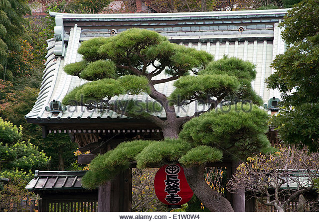 Japanese Religious Beliefs Stock Photos & Japanese Religious.