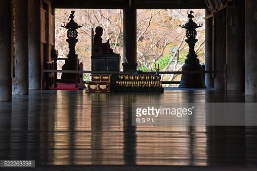 Ancient Cedar Tree And Shimenawa Rope At Sacred Omiwa Jinja Shrine.