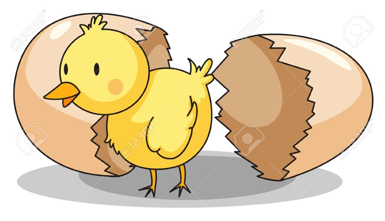 Baby Chicks Hatching Clipart.