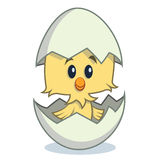 Cute Cartoon Chick Hatching From Egg Stock Illustration.